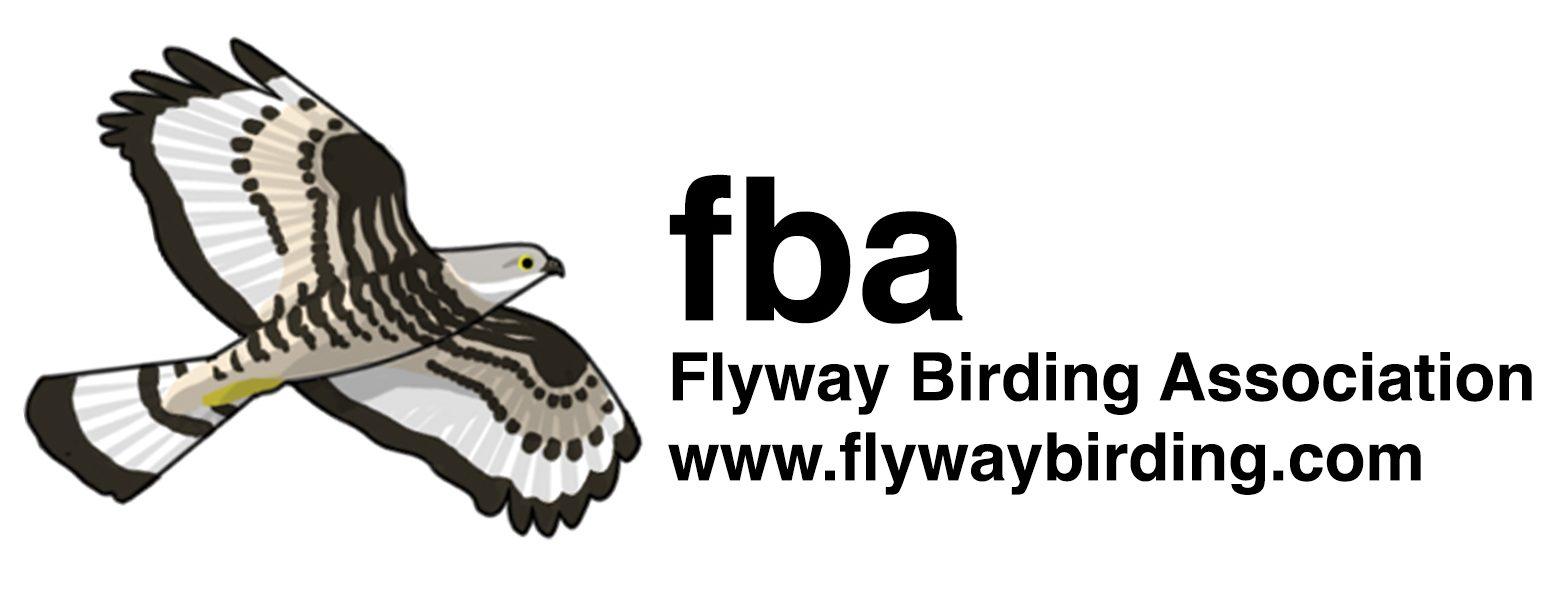 The Flyway Birding Association